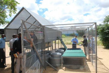 EIF assists Think Namibia Aquaponics Systems Project