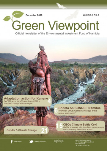 GreenViewpoint Newsletter Summer edition